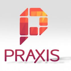 Praxis: Apprentice at a Startup